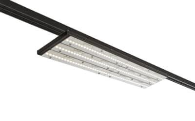 LS 5017-J LED